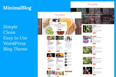 Best WordPress theme For Blogs
