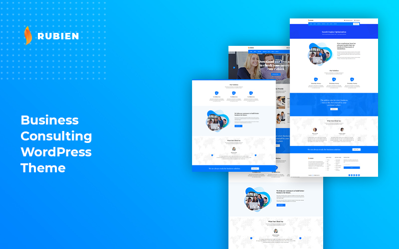 WordPress theme for Buinsess and Consultant